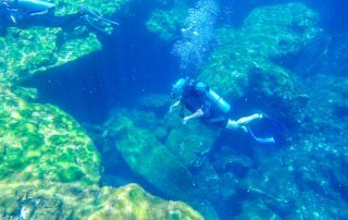 Diving El Jardin del Eden
