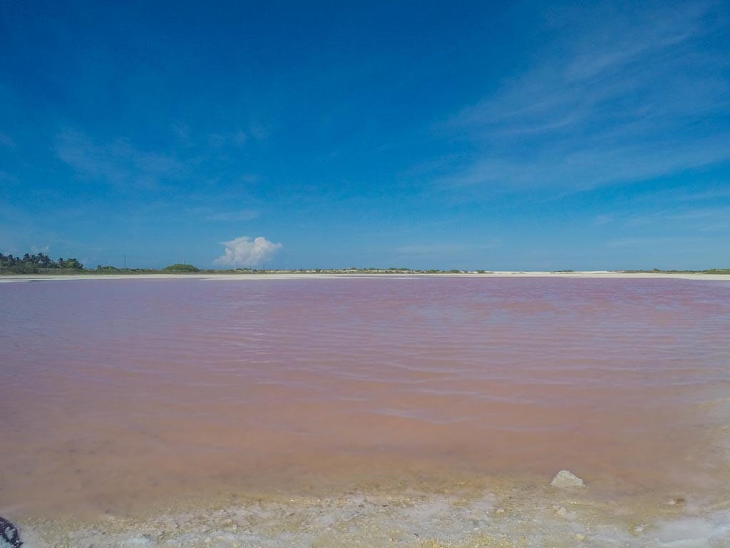 Las Coloradas Messico