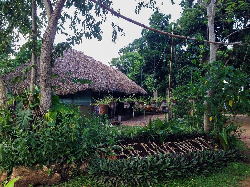 Cenote Kikil - capanna