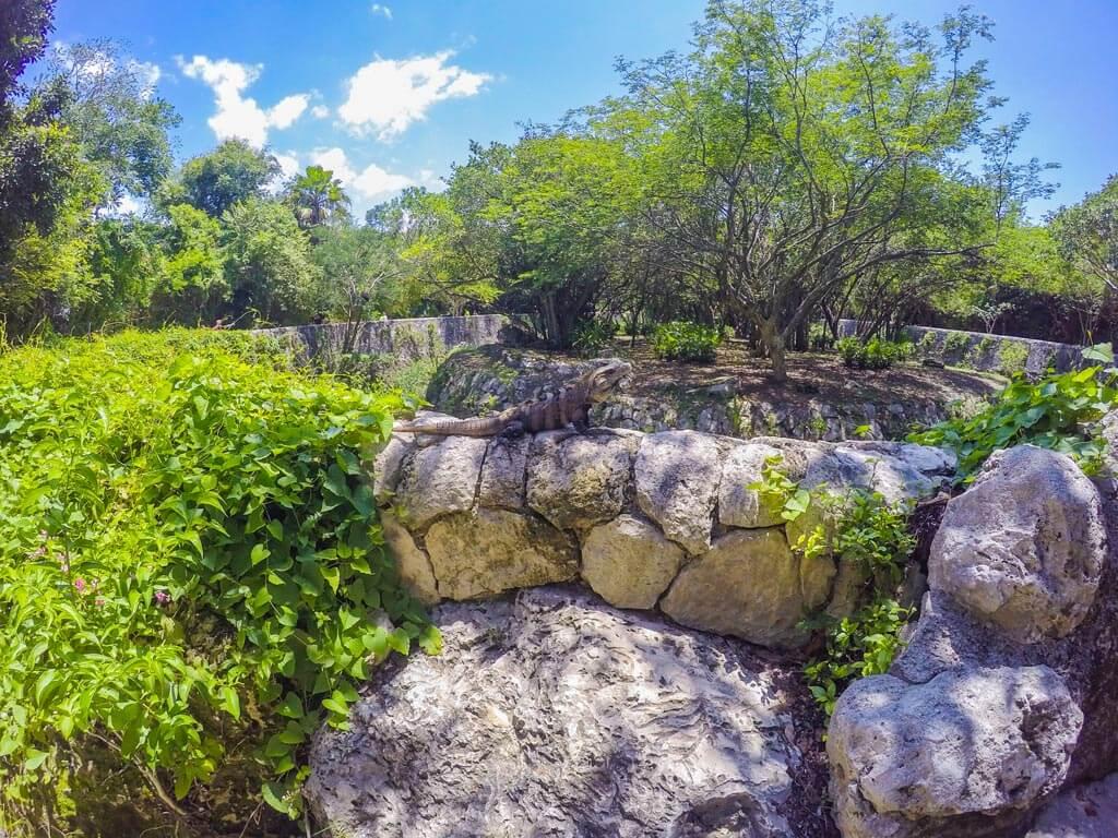 Xcaret parco della riviera Maya