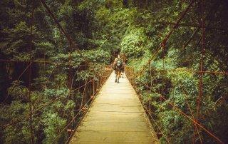 Francesco che attraversa un ponte di legno e corde