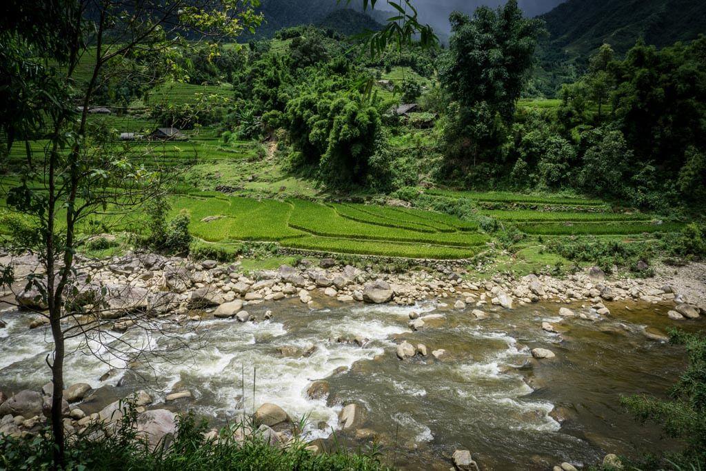 Rapide tra i campi di riso