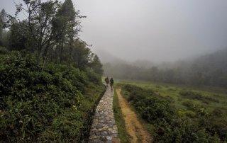 Il sentiero che porta alla cascata immerso nella nebbia di sapa