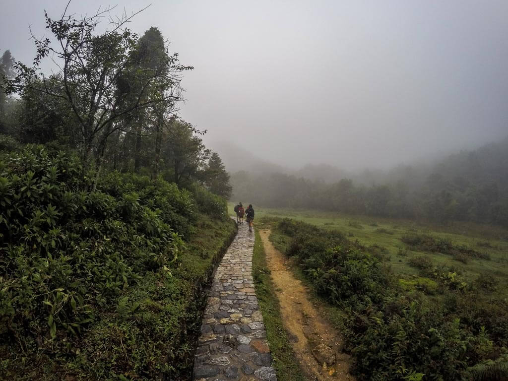 Sentiero nella nebbia