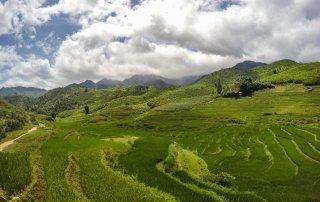 Le verdi e infinite distese di riso con le montagne sullo sfondo