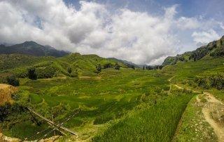 Un piccolo sentiero tra le risaie di sapa