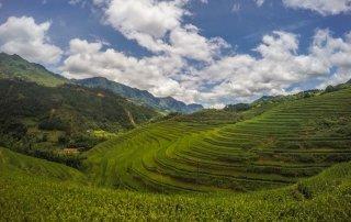 Infinite verdi terrazze di riso