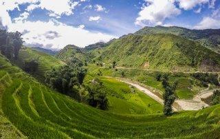 Verdi terrazze di riso a strapiombo