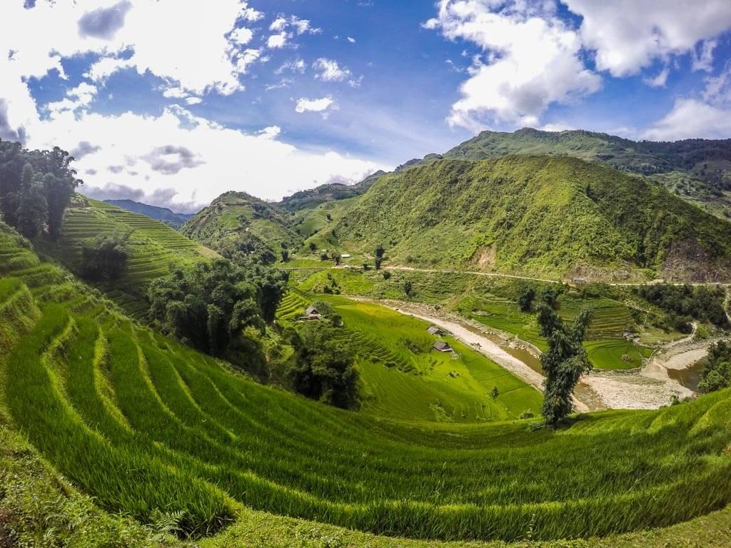 Terrazze di riso a strapiombo