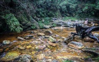 Il fiume golden river, che prende il suo nome dal colore delle sue pietre