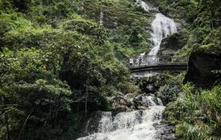 Ponte sospeso a metà della cascata