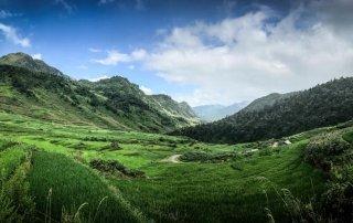 Terrazze di riso nella valle