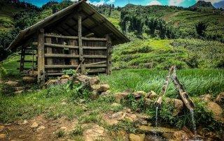 Un sistema di tubi di legno porta l'acqua nei campi di riso