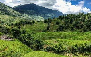 Vallata di terrazze di riso