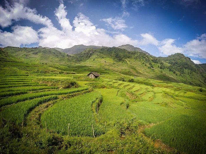 Una casetta di legno nel mezzo dell'immensa terrazza di riso di sapa