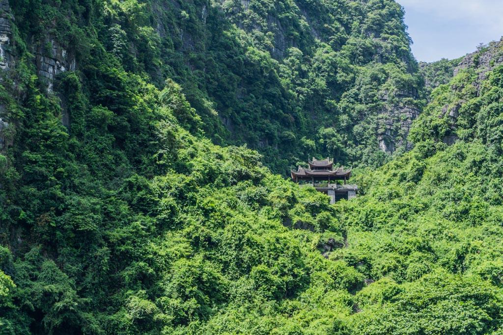 Vietnam del nord - Tempio nascosto nella vegetazione di Trang An