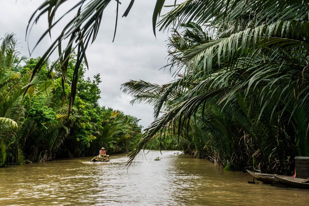 Barche dentro il fiume con le palme sulle sponde