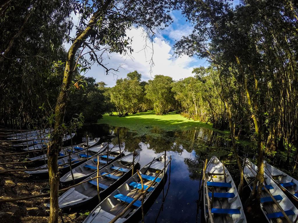 Barche di legno sul fiume nella foresta