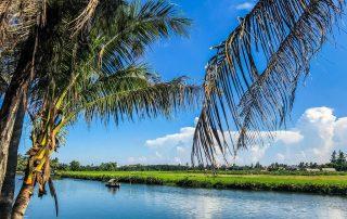 Vista del fiume immerso nelle campagne di Hoi An con una piccola barca in lontananza