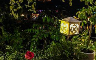 Ristorante Cyclo's Road con piante lanterne e fiori