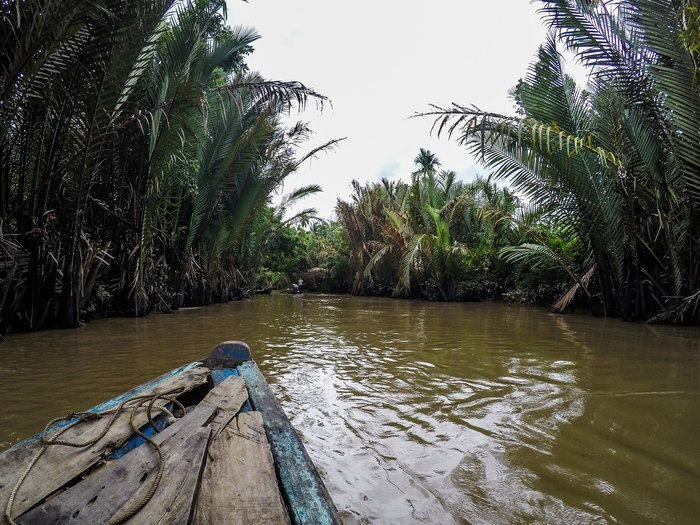 Barca sul fiume circondata da palme