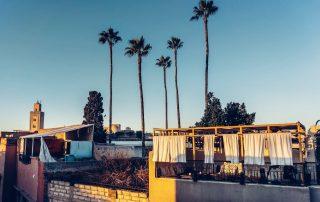 Foto dei tetti di Marrakech con palme sullo sfondo