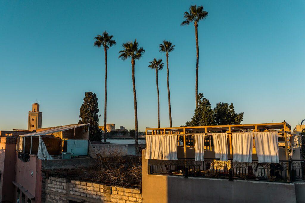 5 palme fanno da contorno a una terrazza sopra Marrakech al tramonto