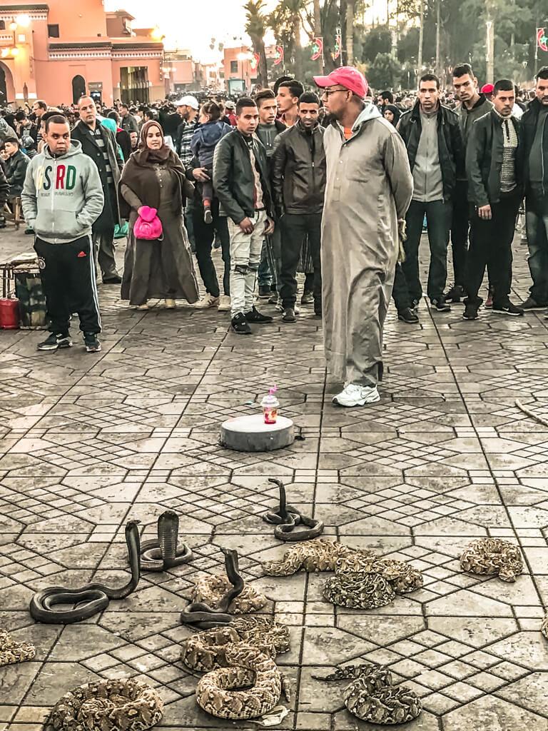 Marrakech_incantatori di serpenti