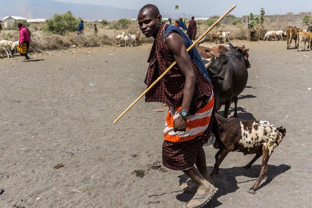 Tanzania_Villaggio Masai di Ngaruka
