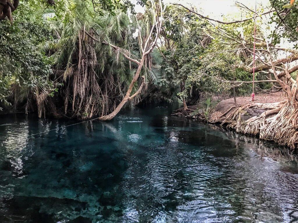 Tanzania_Kikuletwa Hot Springs
