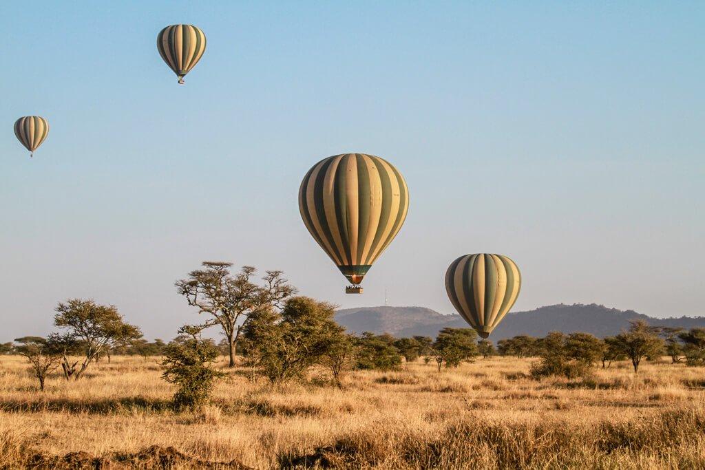 SAFARI IN AFRICA: TUTTO CIÒ CHE DEVI SAPERE PRIMA DI PARTIRE