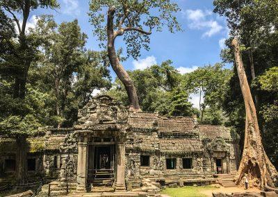 tempio con alberi