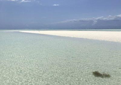 Viaggio a Zanzibar_Pongwe