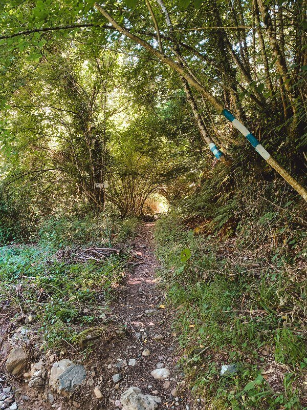 Trekking Toscana Il Sentiero di Matilda