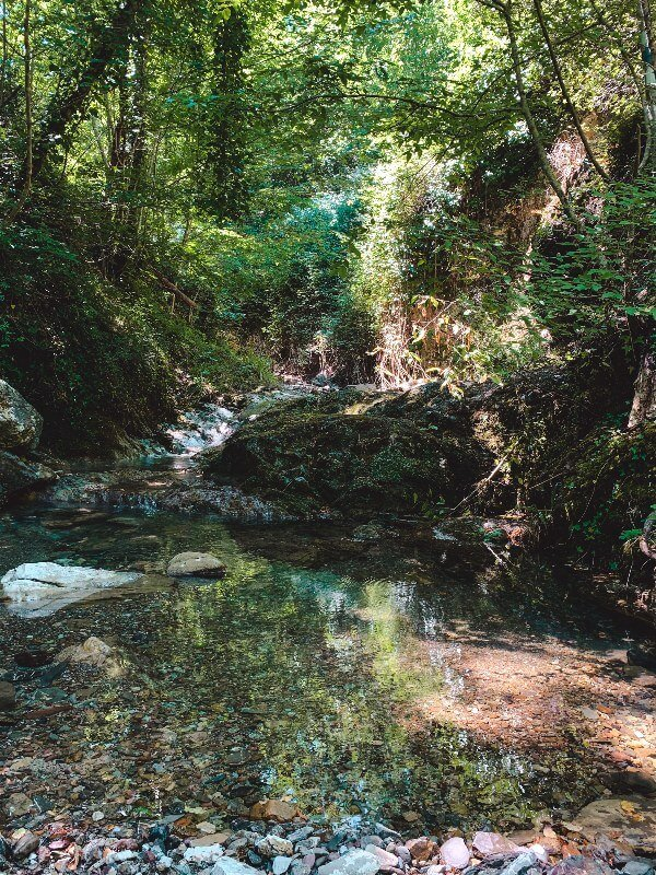 Trekking Toscana Sentierelsa