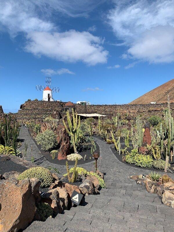 Cosa fare a Lanzarote_Jardin de Cactus